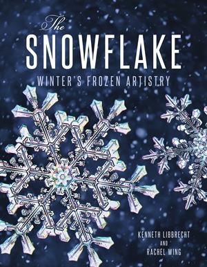 The Snowflake Winter's Frozen Artistry