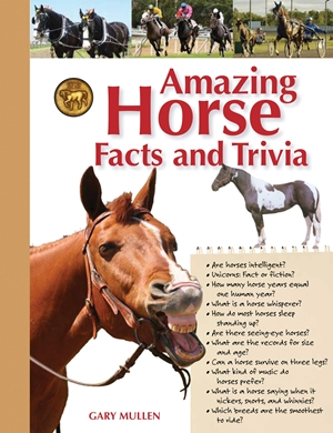 Amazing Horse Facts and Trivia
