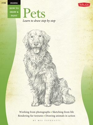 Drawing: Pets Learn to paint step by step