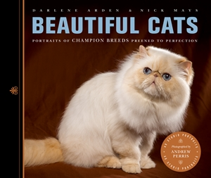 Beautiful Cats Portraits of Champion Breeds Preened to Perfection