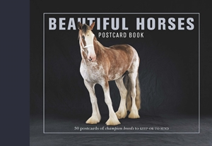 Beautiful Horses Postcard Book