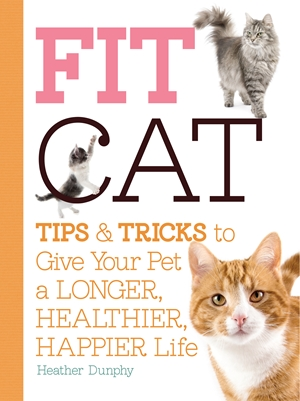 Fit Cat Tips and Tricks to Give Your Pet a Longer, Healthier, Happier Life