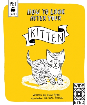 How to Look After Your Kitten