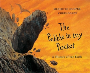 The  Pebble in my Pocket