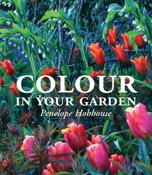 Colour in Your Garden