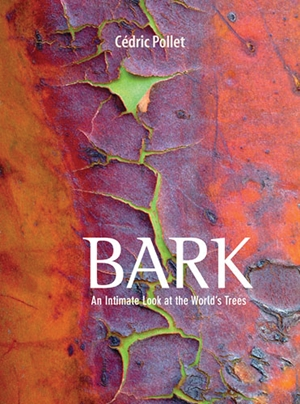 Bark An Intimate Look at the World's Trees