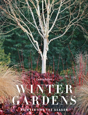 Winter Gardens Reinventing the Season