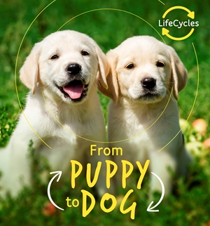 Lifecycles - Pup To Dog (Lerner)