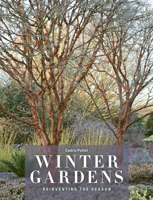 Winter Gardens Reinventing the Season