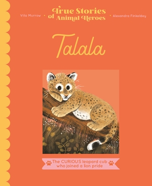 Talala The curious leopard cub who joined a lion pride