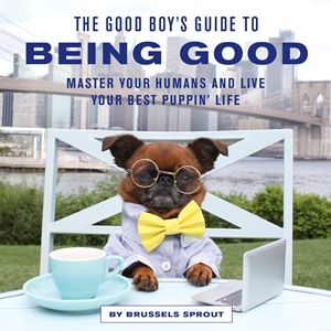 The Good Boy's Guide to Being Good