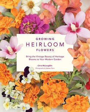 Growing Heirloom Flowers