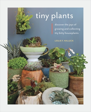 Tiny Plants Discover the joys of growing and collecting itty-bitty houseplants