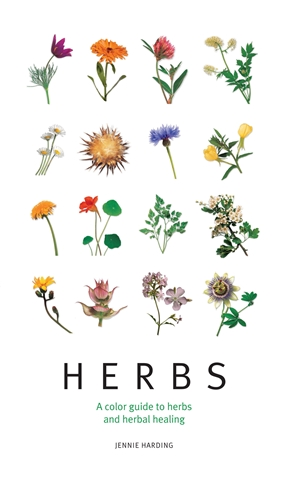 Herbs A color guide to herbs and herbal healing