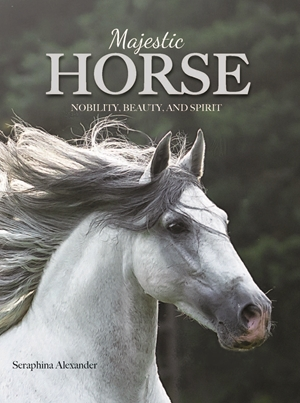 Majestic Horse Nobility, Beauty, and Spirit