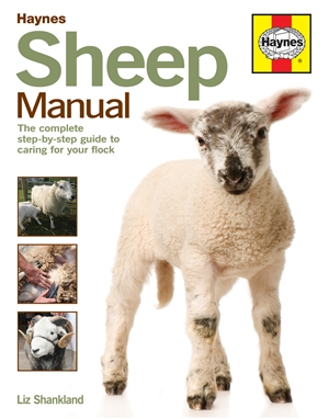 Sheep Manual The complete step-by-step guide to caring for your flock