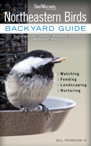 Northeastern Birds Backyard Guide - Watching - Feeding - Landscaping - Nurturing - New York, Rhode Island, Connecticut, Massachusetts, Vermont, New Hampshire, Maine