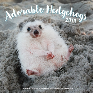 Adorable Hedgehogs Mini 2018