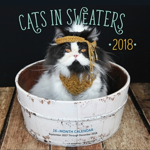 Cats in Sweaters Mini 2018