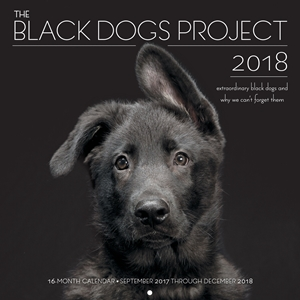 The Black Dogs Project 2018