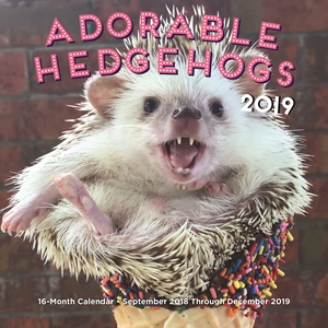 Adorable Hedgehogs Mini 2019