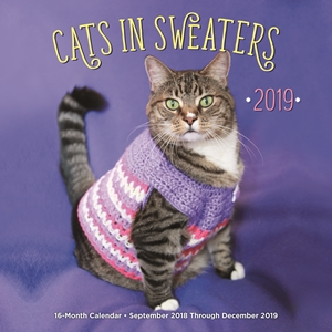 Cats In Sweaters 2019