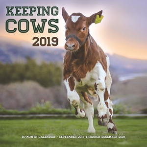 Keeping Cows 2019