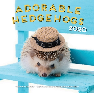 Adorable Hedgehogs 2020