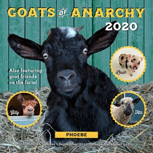 Occult Calendar December 2020 Goats of Anarchy 2020 by Leanne Lauricella