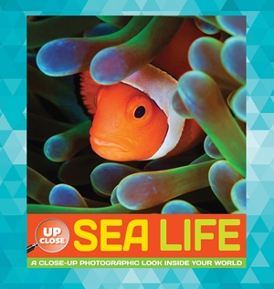Sea Life A close-up photographic look inside your world