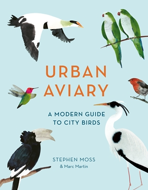 Urban Aviary A modern guide to city birds