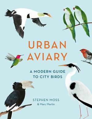 Urban Aviary A modern guide to city birds