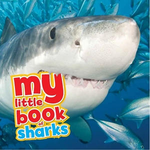 My Little Book of Sharks