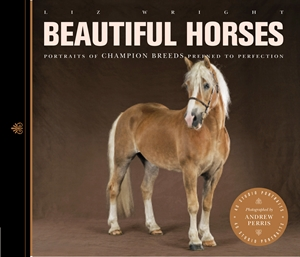 Beautiful Horses Portraits of Champion Breeds Preened to Perfection