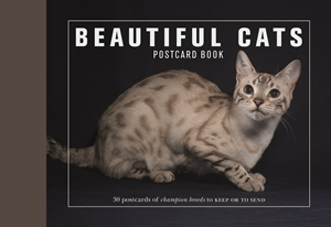 Beautiful Cats Postcard Book