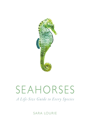 Seahorses A Life-size Guide to Every Species