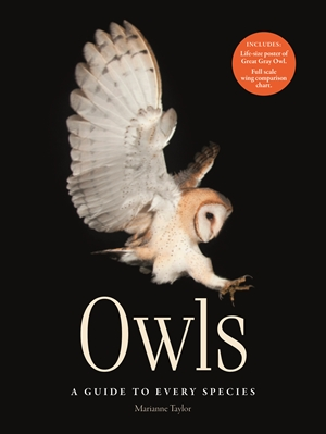 Owls A guide to every species