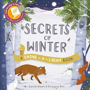 Shine a Light: Secrets of Winter