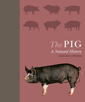 The Pig A Natural History