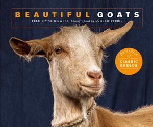 Beautiful Goats Portraits of champion breeds