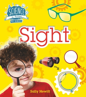 The Senses: Sight