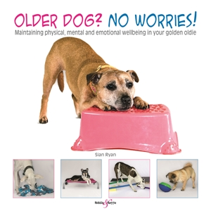 Older dog? No worries!