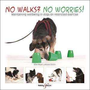 No walks? No worries!