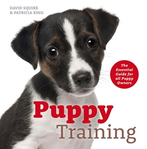 Puppy Training The Essential Guide for All Puppy Owners