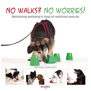 No walks? No worries!