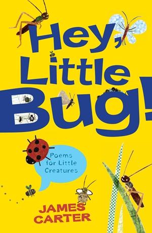Hey Little Bug