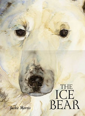 Ice Bear Signed Edition