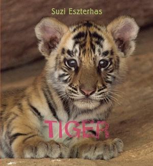Eye on the Wild: Tiger