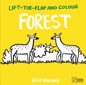 Lift-the-flap and Colour Forest