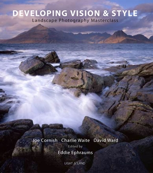 Developing Vision & Style